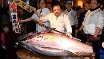 Pagan en Japón 74 millones de yenes (600.000 euros) por un atún rojo
