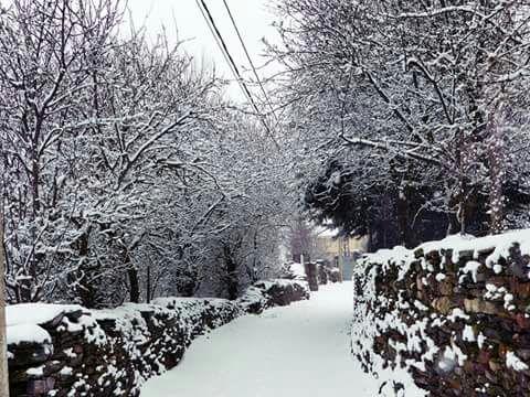 Cantalojas volvió a ver este viernes sus calles cubiertas de nieve