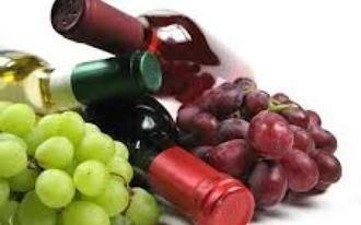 20 alumnos se gradúan en la primera promoción de Viticultura y Enología en la Universidad de Castilla-La Mancha