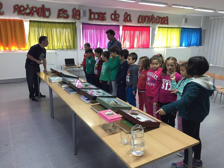 Los niños de Quer aprendieron sobre insectos de la mano de Jesús Balandín, coleccionista y entomólogo aficionado setero