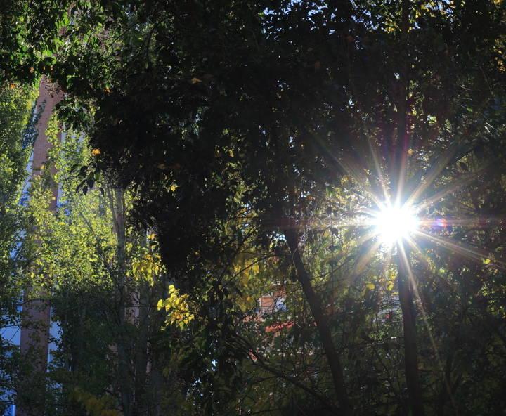 Hasta los 18ºC llegará el mercurio este jueves en Guadalajara donde brillará el sol en unos cielos azules