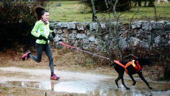 Perros y corredores llenarán el Parque del Henares en otra edición del Canicross de Guadalajara