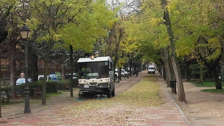 Se intensifican las labores para la retirada de las hojas de los árboles en la capital