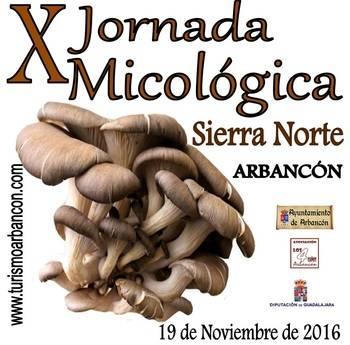 Arbancón no falta a su cita anual con las setas y los hongos