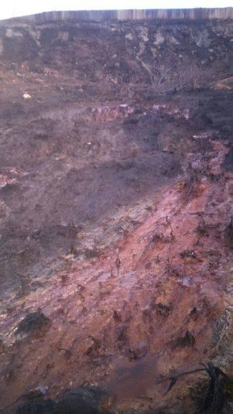 Ecologistas en Acción alerta de la situación de la 'zona cero' del incendio de Chioeches por falta de acción de la Junta