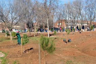 Plantados los primeros 50 árboles del proyecto 'En Azuqueca, nace un bebé, nace un árbol'