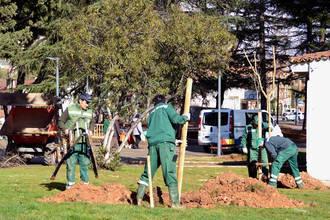 En 2017 Azuqueca plantará un árbol por cada recién nacido que se empadrone en el municipio