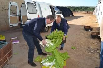 El Centro de Investigación Agroambiental de Marchamalo reparte lo que produce entre entidades benéficas