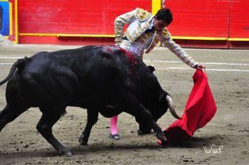 El torero afincado en Fuentelencina Juan de Castilla toma la alternativa en Medellín