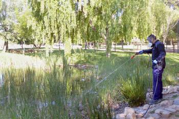 Azuqueca de Henares intensifica la campaña contra los mosquitos