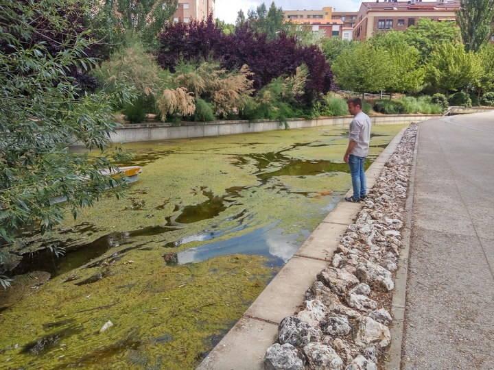 Cs Guadalajara solicita una actuación en la lámina de agua y el entorno del Barranco del Alamín