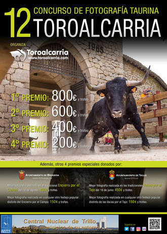 Toro Alcarria vuelve a buscar la mejor historia taurina contada en clave gráfica