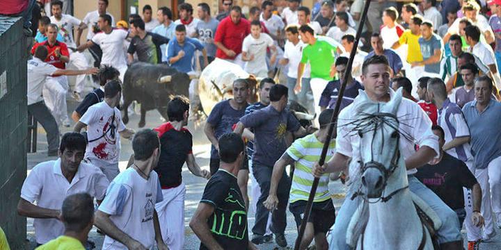 El Grupo Popular en la Diputación de Guadalajara reclama a la Junta que modifique el reglamento de Festejos Taurinos de Castilla-La Mancha
