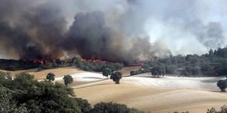 Continúa activo el incendio de Almoguera en el que trabajan 3 medios y 12 personas