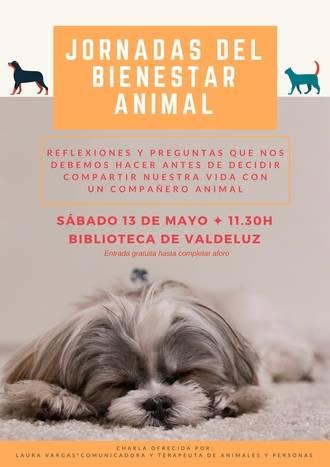 Los dueños de mascotas tienen una cita este sábado en Valdeluz con las Jornadas de Bienestar Animal