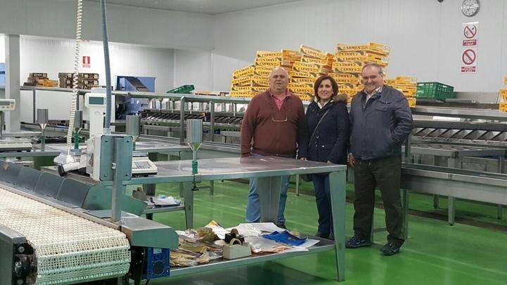 Yolanda Ramírez visita diferentes empresas de producción del espárrago en Torre del Burgo