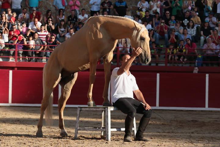 Toño Serrano, el 'encantador de caballos', estará en Ecualtur 2017