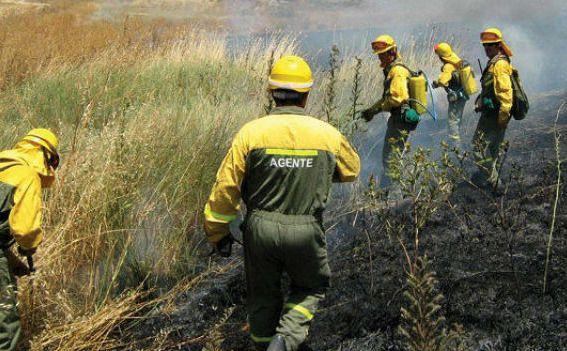 Exigen explicaciones y que se depuren responsabilidades a la Junta de Page por la intoxicacion de, al menos, 15 bomberos forestales en el incendio de Yeste