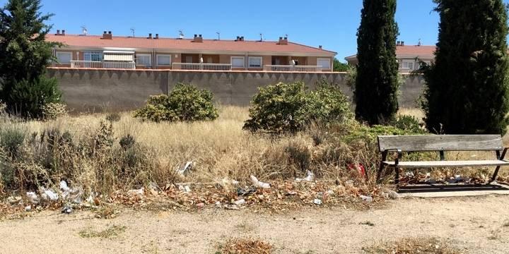 """El PP de Villanueva de la Torre exigirá """"medidas urgentes para acabar con la suciedad que anida en las calles"""""""