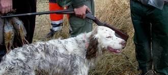 La Federación de Caza de CLM dice que Page abdica ante el sector animalista