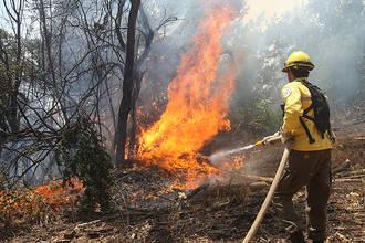 Controlados los dos incendios forestales en Bocigano y El Cardoso de la Sierra