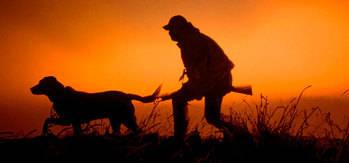 El próximo lunes comienza la media veda de caza en Castilla-La Mancha