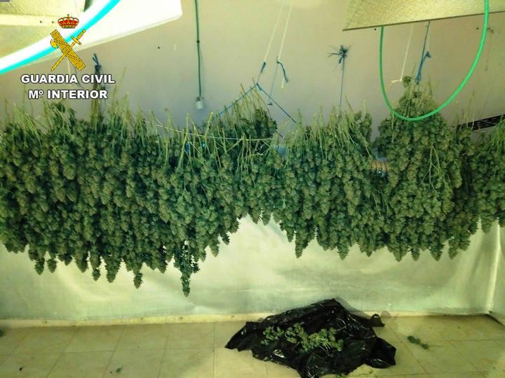 48 kilos de marihuana y 78 gramos de cocaína llevan a la cárcel a cuatro personas en Torrejón del Rey