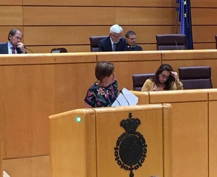 La senadora Ana González pide al Gobierno que refuerce las medidas para frenar el fracaso escolar en la población desfavorecida