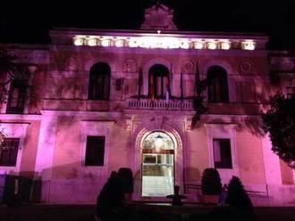 Diputación iluminará de rosa la fachada del Palacio Provincial por el Día Contra el Cáncer de Mama