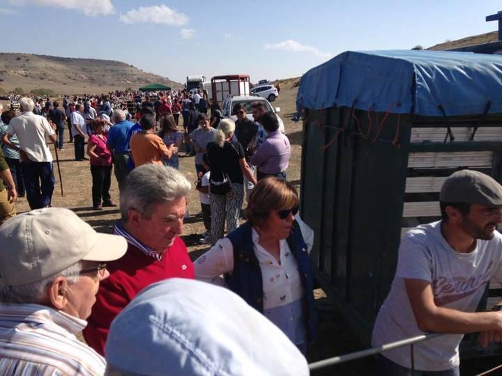 La Diputación concede ayudas a las Ferias agropecuarias de Cantalojas, Hiendelaencina, Aranzueque y Yunquera