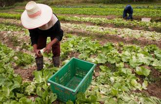 Los agricultores ecológicos piden a Page que les devuelva los derechos y pague las ayudas