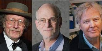 Los descubridores del 'reloj biológico' del cuerpo humano reciben el Nobel de Medicina