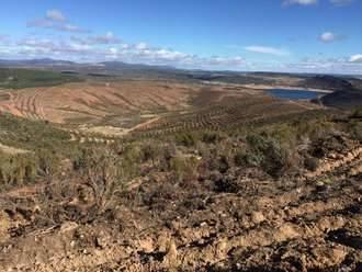 Ecologistas en Acción denuncia a la CHT y Tragsa por 'atentado ecológico' en la Sierra de Ayllón