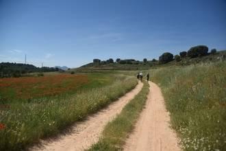 El proyecto del viaje a La Alcarria de la Diputación es seleccionado como 'caso de éxito' en un Congreso internacional en Segovia