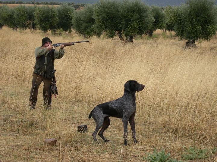 Los cazadores de Castilla-La Mancha, muy molestos con la Ley que les quiere imponer la Junta