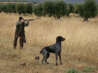 Los cazadores de la región rechazarán en su totalidad la Ley de Caza si se aprueba la propuesta de Podemos