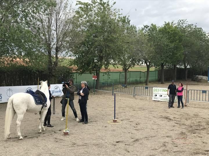 Destina Logística continuará apoyando en 2018 la labor de la Asociación Unicornio Azul