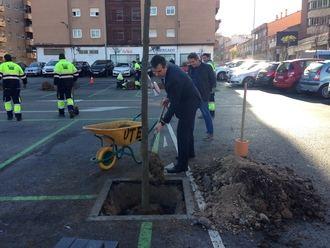 En 2018, el Ayuntamiento de Guadalajara plantará 1.200 árboles en la ciudad