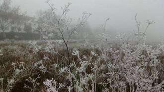 Molina de Aragón, entre las más frías de España esta madrugada con -5,9ºC