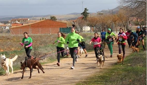 Concluyó el IX Circuito de Canicross Diputación de Guadalajara con la prueba de Humanes