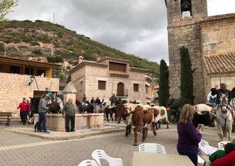 Más de 400 personas disfrutan de la trashumancia entre Atanzón y Caspueñas