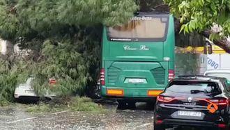 Un tornado inesperado provoca cuantiosos daños en el centro de Sevilla