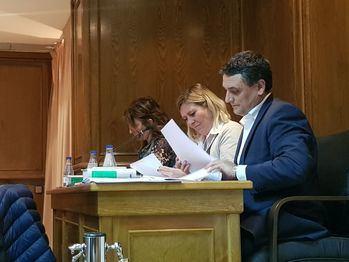 El consistorio aloverano pedirá las Fíbulas de Alovera al Museo Arqueológico a petición de Ciudadanos