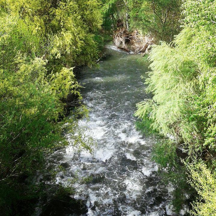 El río Henares a su paso por Guadalajara. Foto : Jacinto García