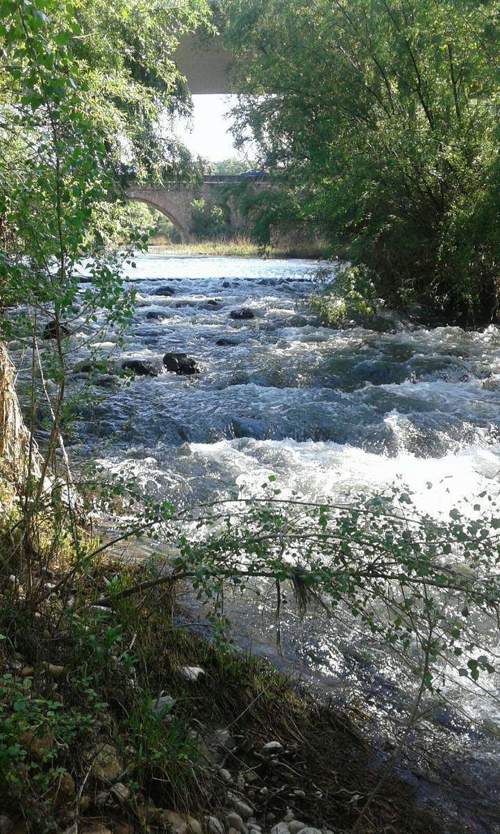 El río Henares a su paso por el puente árabe en Guadalajara Foto : Jacinto García