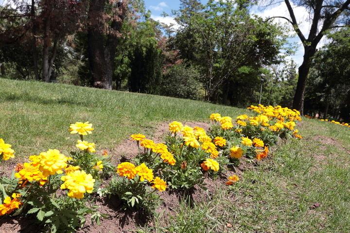 Sigue el ambiente soleado este martes en Guadalajara llegando el mercurio a los 31ºC