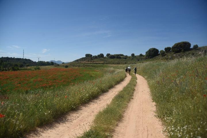 La Diputación de Guadalajara explicará el proyecto del 'Viaje a la Alcarria' en Castellón con motivo del Día de Europa