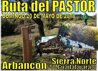 La Ruta del Pastor reivindicará la vida y la cultura rural en Arbancón