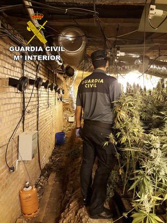 La Guardia Civil desmantela dos plantaciones de marihuana en Cabanillas del Campo y en Torrejón del Rey