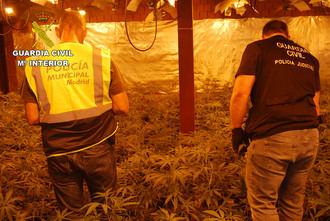 Golpe de la Guardia Civil contra la producción de marihuana en El Casar: 11 detenidos con más de 3.000 plantas